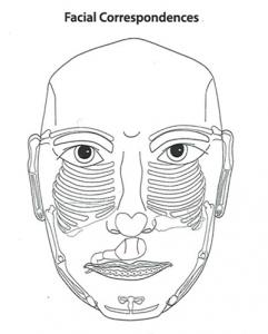 facial_correspondents