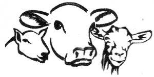 logo-cows