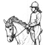 rider150